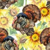 Watercolor Τουρκία με το άνευ ραφής σχέδιο ηλίανθων στο άσπρο υπόβαθρο Στοκ Εικόνες