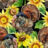 Watercolor Τουρκία με το άνευ ραφής σχέδιο ηλίανθων Στοκ φωτογραφίες με δικαίωμα ελεύθερης χρήσης