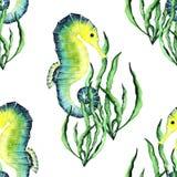 Watercolor φωτεινό Paterrn με Seahorses και το φύκι διανυσματική απεικόνιση