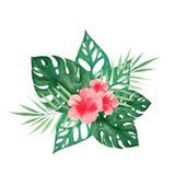 Watercolor που τίθεται με τα τροπικά φύλλα και τα λουλούδια ελεύθερη απεικόνιση δικαιώματος