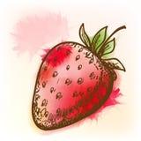 Φράουλα, ζωγραφική watercolor Στοκ Εικόνα