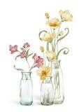 η διακοσμητική εικόνα απεικόνισης πετάγματος ραμφών το κομμάτι εγγράφου της καταπίνει το watercolor Στοκ Εικόνα