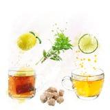 Τσάι καθορισμένο Watercolor Στοκ Φωτογραφίες
