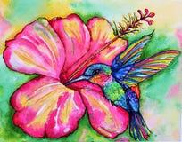 watercolor Royalty-vrije Stock Afbeelding