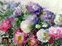 Watercolor abstract background floral pattern garden summer bouquet of asters flower texture decoration hand beautiful wallpaper. Watercolor art abstract royalty free illustration