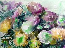 Watercolor abstract background floral pattern garden summer bouquet of asters flower texture decoration hand beautiful wallpaper. Watercolor art abstract stock illustration