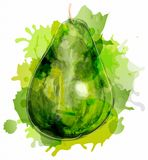 Watercolor green pear Stock Photo