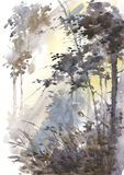 Watercolor abstract landscape, forest in sunshine. Royalty Free Stock Photos