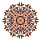 Watercolor abstract mandala. Circular pattern of feathers isolated on white background. Watercolor abstract mandala. Hand painted pattern with feathers in Royalty Free Stock Image