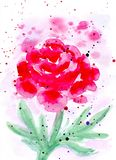 Watercolor abstract peony card. Raster illustration. vector illustration