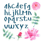 Watercolor alphabet with flowers. In vintage style royalty free illustration