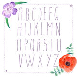 Watercolor alphabet with flowers in vintage style. Vector royalty free illustration