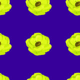 Watercolor anemone flower  seamless pattern Stock Images