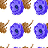 Watercolor anemone flowers  seamless pattern Royalty Free Stock Image