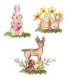 Watercolor animals. Hand-drawn watercolor collection of Easter cute bunnies, deer, spring flowers and colored eggs isolated on the white background. Set of Stock Illustration