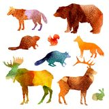 Watercolor Animals Set Royalty Free Stock Image