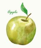 Watercolor Apple Χέρι που χρωματίζεται Στοκ φωτογραφία με δικαίωμα ελεύθερης χρήσης