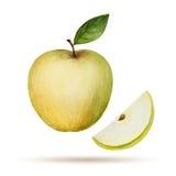 Watercolor Apple Στοκ εικόνα με δικαίωμα ελεύθερης χρήσης