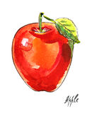 Watercolor Apple Στοκ φωτογραφίες με δικαίωμα ελεύθερης χρήσης