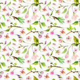 Watercolor apple flowers seamless pattern. Beautiful background for design stock illustration