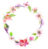 Watercolor apple flowers wreath Stock Photos