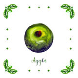 Watercolor apple with green leaves Stock Images