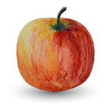 Watercolor apple isolated on a white background image, vector Stock Photography