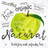 Watercolor apple Stock Photo
