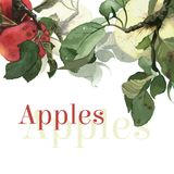 Watercolor apples with leaves. Background. Royalty Free Stock Image