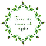 Watercolor apples and leaves vector frame Stock Photography