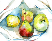 Watercolor apples pears. On white Royalty Free Stock Photography
