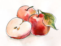 Watercolor apples Royalty Free Stock Photos