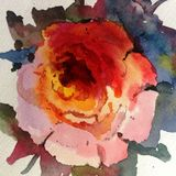 Watercolor art background abstract beautiful floral flower rose garden nature colorful textured stock illustration