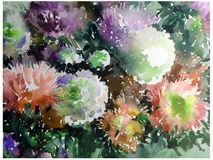 Watercolor abstract background floral pattern flowers asters garden love  wet wash blurred decoration hand beautiful wallpape. Watercolor art abstract background Royalty Free Stock Photography