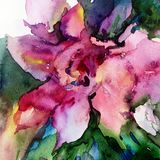 Watercolor art abstract background floral exotic flower texture wet wash blurred fantasy. Art abstract background extruded in watercolor. nature bright wash Royalty Free Stock Photos