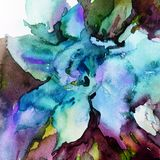 Watercolor art abstract background floral exotic flower texture wet wash blurred fantasy. Art abstract background extruded in watercolor. nature bright wash Royalty Free Stock Photography