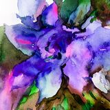 Watercolor art abstract background floral exotic flower texture wet wash blurred fantasy. Art abstract background extruded in watercolor. nature bright wash Stock Photo