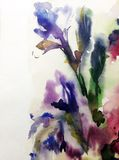 Watercolor art abstract background fresh beautiful floral iris flowers  modern textured wet wash blurred fantasy. Art abstract background extruded in watercolor Royalty Free Stock Photos