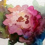 Watercolor art background abstract beautiful floral flower rose garden nature colorful textured royalty free illustration