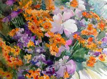 Watercolor art background colorful bouquet flower orange yellow blue violet white wild. Art background extruded watercolor. textured wet wash blurred brush Stock Photos