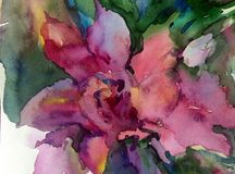 Watercolor art background colorful flower Stock Image
