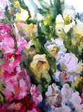 Watercolor art background colorful flowers bouquet garden Royalty Free Stock Photography