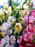 Watercolor art background colorful flowers bouquet garden Stock Image