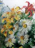 Watercolor art background colorful nature summer yellow red white flower chamomile lilyes bouquet blossom branch spring garden Stock Photos