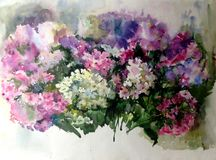 Watercolor art background colorful summer flower bouquet violet white lilac phlox. Art abstract background executed with watercolors . delicate lilac phlox Stock Image
