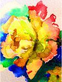 Watercolor art background nature  fresh colorful yellow rose flower single delicate romantic love. Art  background abstract extruded in watercolor technical Stock Photography