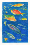 Watercolor art. Fishes Royalty Free Stock Photo
