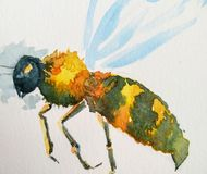 The angry wasp stock illustration