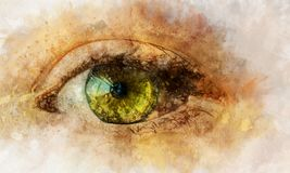 Watercolor artwork of eye. Hand drawn illustration Royalty Free Stock Images