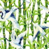Watercolor asian crane bird seamless pattern Stock Photo